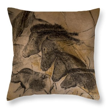 150501p087 Throw Pillow