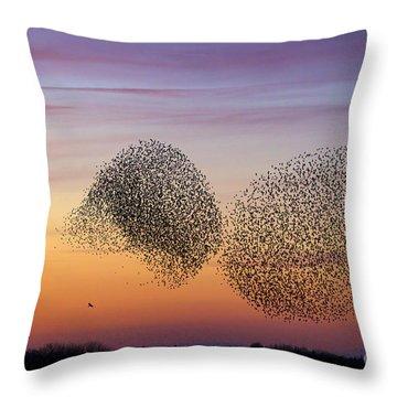 150501p254 Throw Pillow