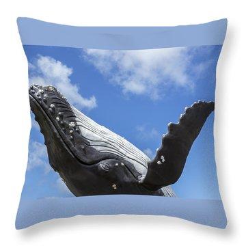 150729p196 Throw Pillow