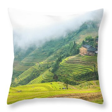 Throw Pillow featuring the photograph Terrace Fields Scenery In Autumn by Carl Ning