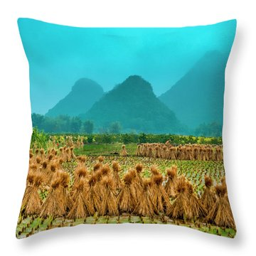 Throw Pillow featuring the photograph Beautiful Countryside Scenery In Autumn by Carl Ning