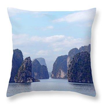 Dragon Boats Throw Pillows
