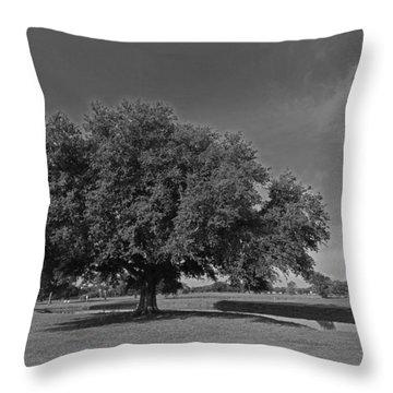 Louisiana Live Oak Tree Throw Pillow