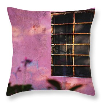 18 Rectangles  Throw Pillow by Prakash Ghai