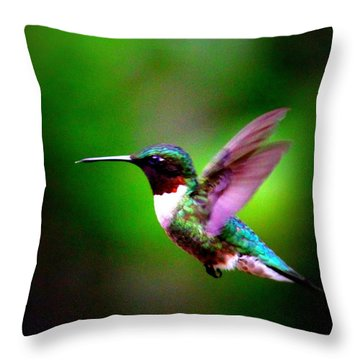 1846-007 - Ruby-throated Hummingbird Throw Pillow