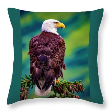 Throw Pillow featuring the photograph Bald Eagle by Norman Hall