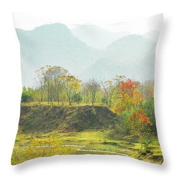 Throw Pillow featuring the photograph The Colorful Autumn Scenery by Carl Ning