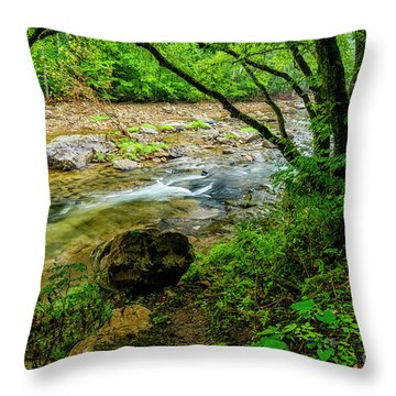 Throw Pillow featuring the photograph Williams River Summer by Thomas R Fletcher