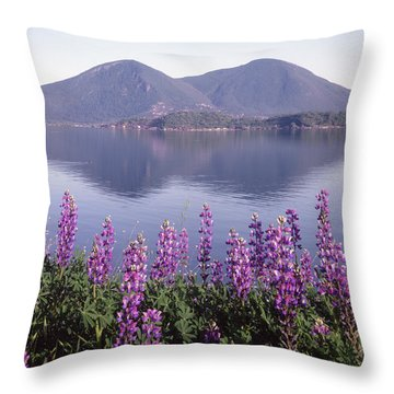 Throw Pillow featuring the photograph 1a6345 Mt. Konocti Reflect Ca by Ed Cooper Photography