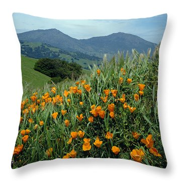 1a6493 Mt. Diablo And Poppies Throw Pillow