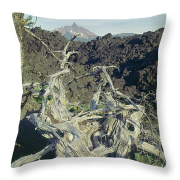 Throw Pillow featuring the photograph 1m5412 Mt. Washington Over Lava Fields Wa by Ed Cooper Photography