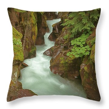 1m8115 Avalanche Gorge Mt Throw Pillow