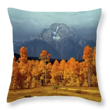 1m9235 Mt. Moran In Autumn Throw Pillow