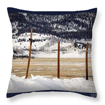 1st Peter Throw Pillow by Janice Rae Pariza