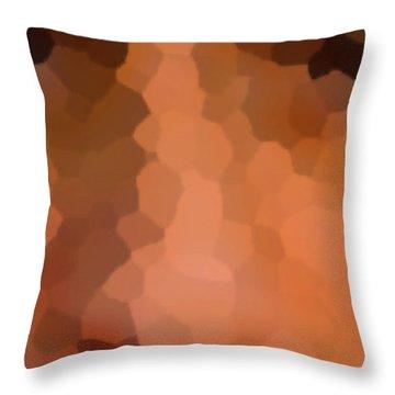 2-25-2057h Throw Pillow