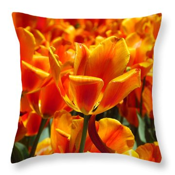 A Field Of Orange Throw Pillow by Alfred Ng