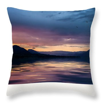 Throw Pillow featuring the photograph Across The Clouds I See My Shadow Fly by John Poon