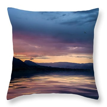 Across The Clouds I See My Shadow Fly Throw Pillow