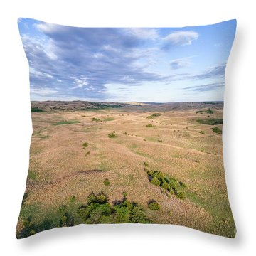 aerial view of Nebraska Sandhills  Throw Pillow