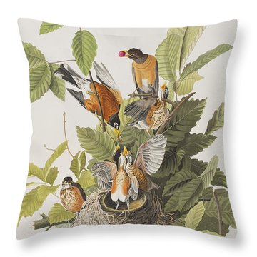 American Robin Throw Pillow by John James Audubon