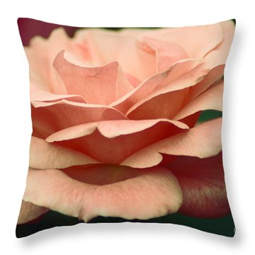 Antique Rose Throw Pillow by Donna Bentley