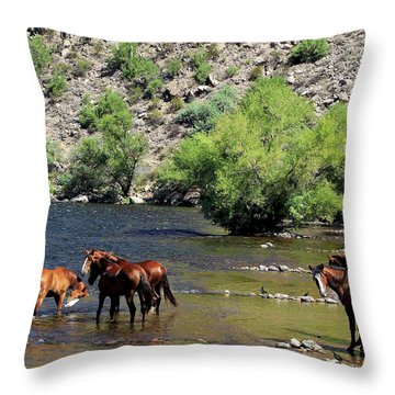 Arizona Wild Horses Throw Pillow