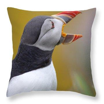 Atlantic Puffin - Scotland Throw Pillow