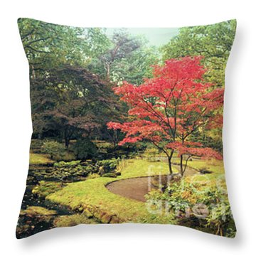 Throw Pillow featuring the photograph autumn  in Japanese park by Ariadna De Raadt