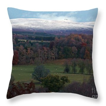Autumn Into Winter  Throw Pillow