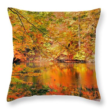 Autumn Reflections Throw Pillow by Kristin Elmquist