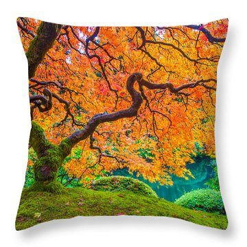 Throw Pillow featuring the photograph Autumn's Jewel by Patricia Davidson