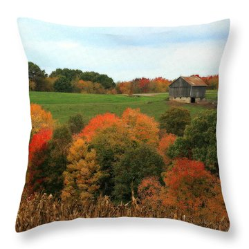 Throw Pillow featuring the photograph Barn On Autumn Hillside by Angela Rath