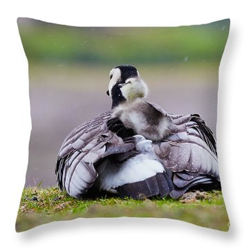 Barnacle Goose With Chick In The Rain Throw Pillow