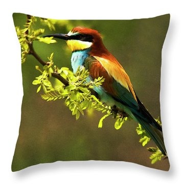 Bee Eater Throw Pillow