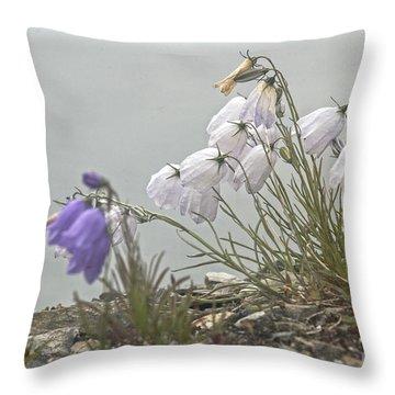 Throw Pillow featuring the photograph Bellflower by Heiko Koehrer-Wagner