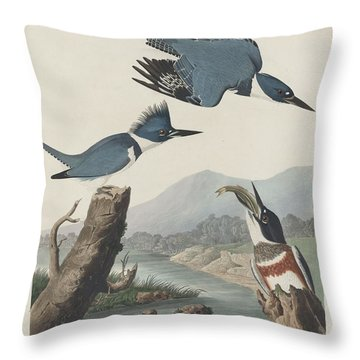 Belted Kingfisher Throw Pillow by Anton Oreshkin