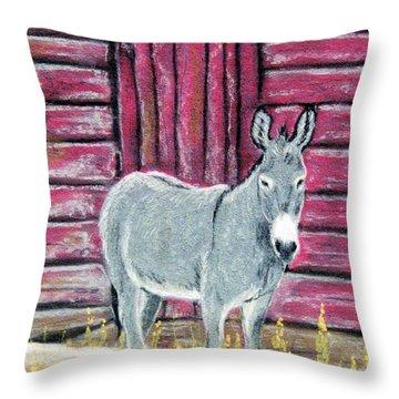 Bernie Throw Pillow by Jan Amiss