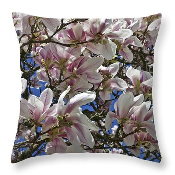 Blossom Magnolia White Spring Flowers Photography Throw Pillow