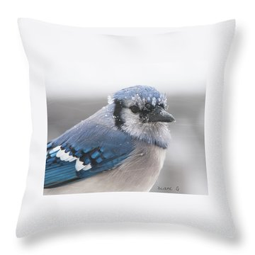 Blue Jay In A Blizzard Throw Pillow