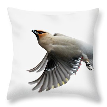 Throw Pillow featuring the photograph Bohemian Waxwing  by Mircea Costina Photography