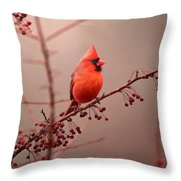 Bold Beauty Throw Pillow