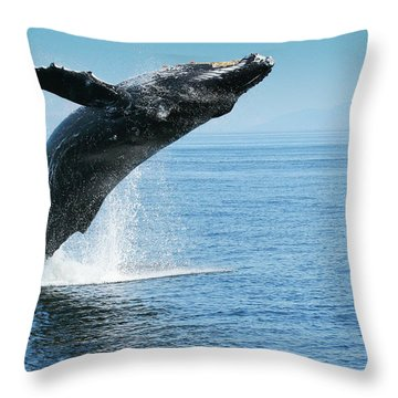 Breaching Humpback Whales Happy-1 Throw Pillow