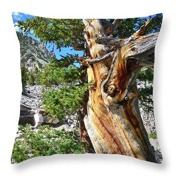 Throw Pillow featuring the photograph Bristlecone Loop Trail by Ray Mathis