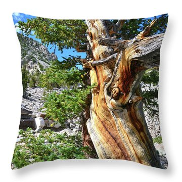 Bristlecone Loop Trail Throw Pillow