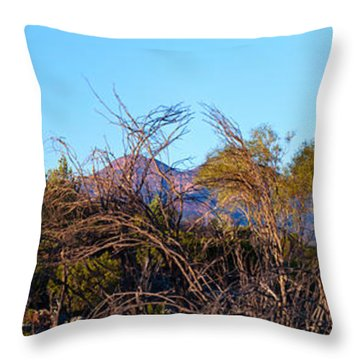 Bunyeroo Valley Throw Pillow by Bill  Robinson