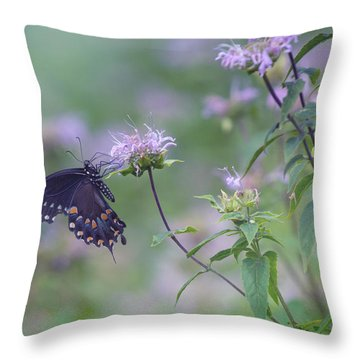 Butterfly Throw Pillow by June Marie Sobrito