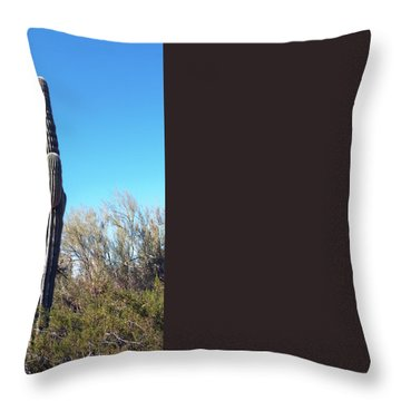 Throw Pillow featuring the photograph Cactus  by Catherine Lau