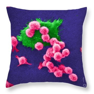 Cancer Cell Death, Sem 2 Of 6 Throw Pillow by Science Source