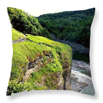 Throw Pillow featuring the photograph Canyon  by Raymond Earley
