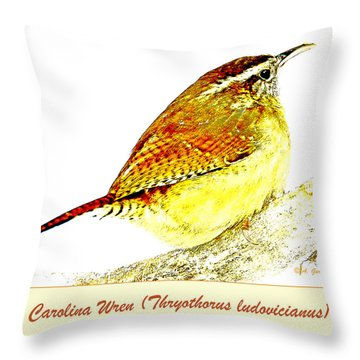 Carolina Wren Animal Portrait Digital Art Throw Pillow
